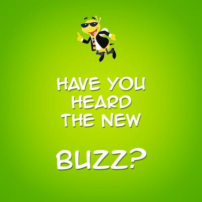 BizCamp devine BUZZ!Camp in 2013