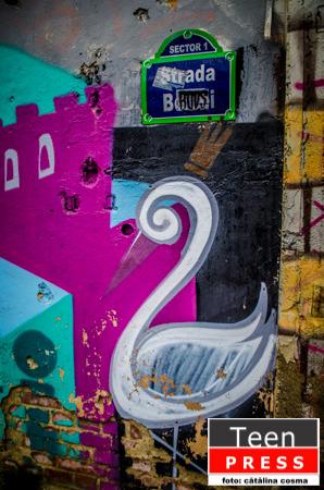 Cutiuța cu Maimuțe – Graffiti – DRAW MY THING!