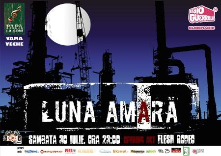 Luna Amara Papa la Soni Vama Veche