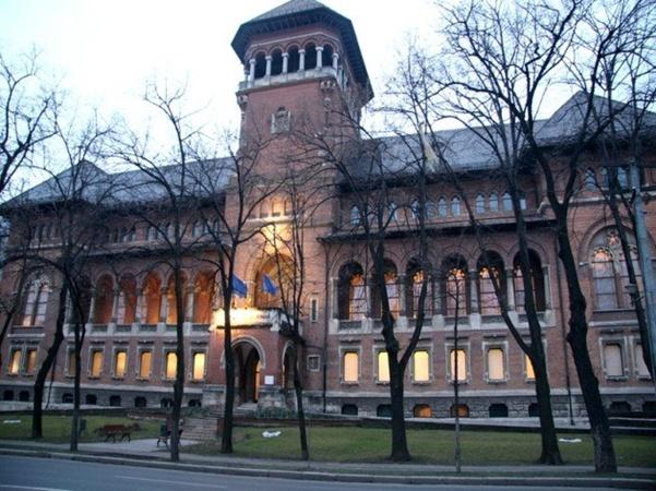 Cinema la Muzeul National al Taranului Roman