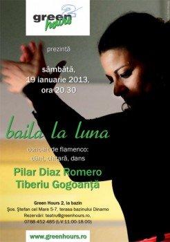Concert Pilar Diaz Romero si Tiberiu Gogoanta in Green Hours 2