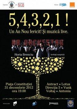 Revelion 2013 in Piata Constitutiei