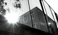 Viata de partea gresita a gardului